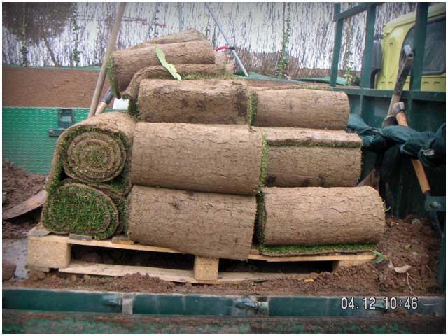 Siembras y plantaciones